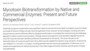 Mycotoxin Biotransformation by Native and Commercial Enzymes: Present and Future Perspectives Image